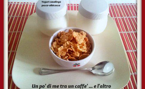 Yogurt pesca albicocca casalingo